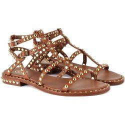 Precious Sandals ASH - Ash - Modalova